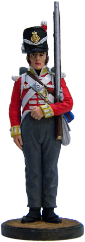 Private battalion company 44th East Essex Regiment. UK, 1812-15