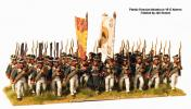 Russian infantry 1809-1814; 28 mm
